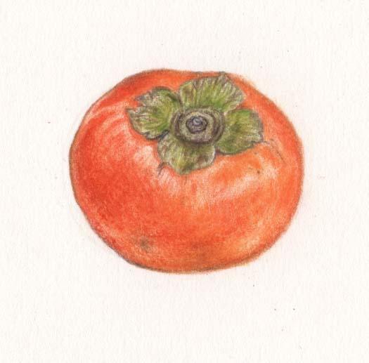 二十四節気「寒露(かんろ)」柿