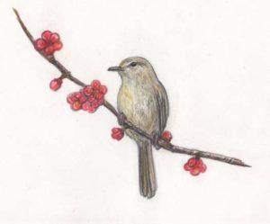 梅と鶯(うぐいす)